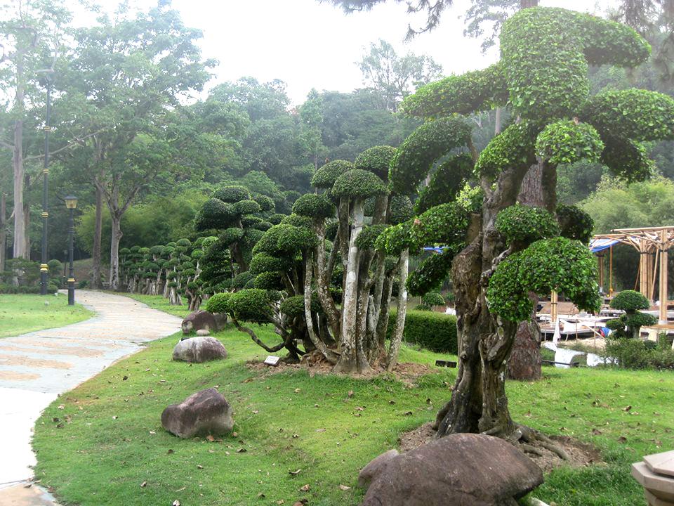 Национальный парк в Куала-Лумпур